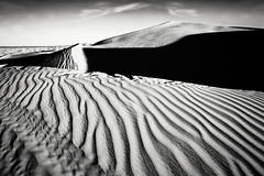 Algodones Dunes_0142 (Lya_Lya) Tags: california light blackandwhite nature lines nationalpark sand shadows dunes trace highcontrast naturallight sanddunes anzaborregodesert drammatic algodonesdunes