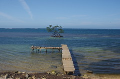 Roatan Island, Honduras (ARNAUD_Z_VOYAGE) Tags: street blue sea people house mountain color building beach colors america forest de landscape island islands bay la boat site amazing rocks view action centro central honduras jungle huge barrier volcanoes roatan reef region volcanic cay moutains department islas rattan mesoamerican centrale honduran baha mountainous basaltic ruatan
