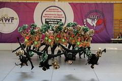 Upside down... (Ambrosini 46) Tags: girls sport canon dance jump czech group indoor champions gymnastic pompom majorettes championchip 70d jesenk