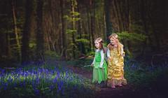 Exploring a magic forest #19/52 week challange (Sigita JP) Tags: bluebells kids forest outdoors magic littlegirl magical storytelling chapter2 naturallightphotography naturallightportrait 52weekchallenge weekno19 littleexplore exoloringamagicforest