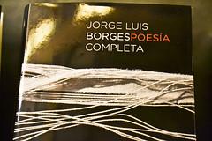 Libro Jorge Luis Borges (Casa de Amrica) Tags: madrid literatura jorgeluisborges borges casadeamrica literaturaargentina casamerica claudioprezmguez ralmanriquegirn elinfinitoborgesunabiografasenimgenes