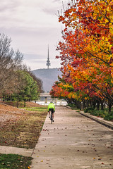 Lunchtime Bike Ride (jimmmy03) Tags: autumn colour tower water leaves bike canon australia canberra canon6d focusaustralia canonaustralia