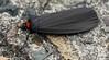 Rotkragen-Flechtenbärchen (Oerliuschi) Tags: nachtfalter fluginsekt nachtaktiv atolmisrubricollis schwarzeflügel tagaktiv rotkragenflechtenbärchen bärenspinnerarctiinae orangerthorax