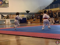 stefanou_15_5_2016_knockdown_50