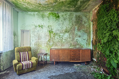 houseplants (ThomasMueller.Photography) Tags: fern green abandoned nature wall chair decay wand natur urbanexploration grn farn ue verlassen sessel urbex verfall marode lostplace