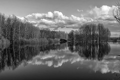 meadows of heaven (Sergey S Ponomarev - very busy) Tags: sky blackandwhite bw primavera nature water monochrome clouds forest canon reflections landscape spring aqua heaven flood russia north may meadow natura bn paysage paesaggio nord russie maggio kirov 2016 russland          vyatka    70d   reflessi   sergeyponomarev ef24105f40l viatka   wjatka