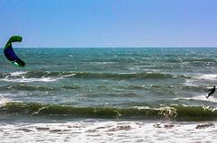 IMG_9841-1 (Andre56154) Tags: ocean italien italy sun kite water sport coast sand meer wasser wind sicily sonne kste gegenlicht sizilien ozean wassersport