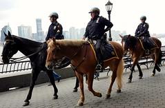 New York mounted police (dorinser) Tags: park horses usa newyork police batterypark trio mountedpolice
