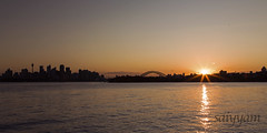 Just a ferry ride away! (vanita kataria) Tags: world new city blue sunset orange house black reflection love water silhouette ferry skyline wales landscape opera cityscape ride outdoor south under sydney australia down southern nsw land across hemisphere