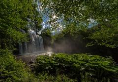 The birth of a water ghost (nickneykov) Tags: plants sun sunlight green water fog forest waterfall nikon bulgaria d750 14mm samyang pancharevo nikond750
