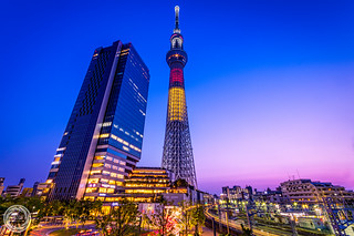 Vers la Belgique, Tokyo Skytree in Twilight
