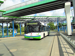 Solaris Urbino 12 III, #2105, SPAD (transport131) Tags: bus autobus zditm szczecin solaris urbino spad