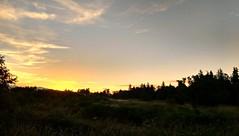 Sunrise (careth@2012) Tags: morning trees field clouds rural sunrise skyscape dawn nikon scenery view scenic scene farmland cloudscape 55300mm nikond3300 d3300