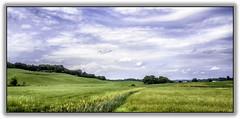 Field by Johnson NY (jsleighton) Tags: sky house field grass spring farm silo hills treeline