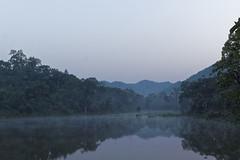 Bhoramdeo - Kawardha - Chhattisgarh - India (wietsej) Tags: india mist fog zeiss landscape sony 24 18 chhattisgarh a6000 bhoramdeo kawardha sel24f18z