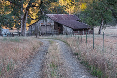 RHM_2491-1538.jpg (RHMImages) Tags: california road trees foothills field barn fence landscape us nikon unitedstates trail sierranevada grassvalley nevadacounty d810 dogbarroad