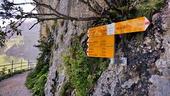 Sign (Swizzly) Tags: alps schweiz switzerland smartphone mobilephone signpost alpen alpstein wegweiser appenzellerland