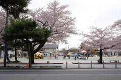 DSCF1556 (chinnian) Tags: japan aomori  fujifilm yayoi loveforever x70  towada  towadaartcenter  fujifilmx70 kusama singingintowada
