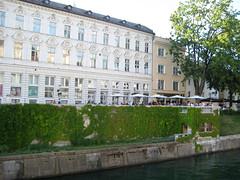 river_life1 (Wiebke) Tags: ljubljana slovenia europe vacationphotos travel travelphotos joeplenik plenik jozeplecnik plecnik ljubljanica ljubljanicariver river riverembankment