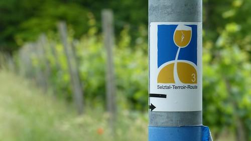 Wegweiser Selztal-Terroir-Route