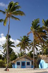 Have you heard many ... (SeavisTours) Tags: wood travel blue homes summer vacation house holiday tree beach architecture wooden seaside sand holidays colorful paradise dominican cottage scenic sunny palm exotic hut punta tropical tropic leisure colourful picturesque tranquil