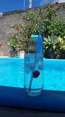 Home / Parnamirim/RN (faugusto_rock) Tags: gelo sol cup rio grande casa do piscina flavio vodka absolut paulo so copo norte augusto calor rn parnamirim