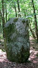 Le menhir d' Auriac Corrze (Nadine Roche) Tags: correze menhir auriac