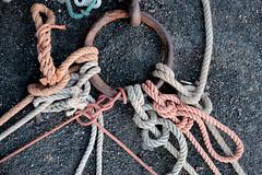 knotted (Bob_Last_2013) Tags: mooring knots