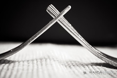 Diner For Two 127/365 (Wanda Abbing Photography) Tags: two blackandwhite bw macro lumix photography wanda diner fork olympus 45 panasonic 365 f18 g3 forks 45mm day127 mft abbing microfourthirds 45mm18 day127365 3652013 365the2013edition 07may13