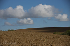 Drilled (Shastajak) Tags: sky clouds shadows pentax farmland tilled k5 cultivated drilled tamron18250mm pentaxk5 guestlingwoods
