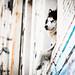 Arts District dog
