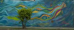 Mujer agua (Nina Nayra) Tags: color rio mujer mural naira