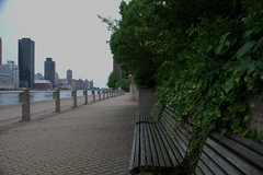Looking north (ecksunderscore) Tags: nyc eastriver rooseveltisland