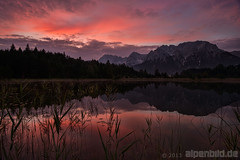 Luttensee Dawn (alpenbild.de) Tags: wood morning summer cloud mountain lake mountains