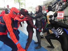 Spiderman Family