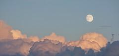 Moon and Clouds (d30n5) Tags: sunset moon clouds nikon surreal peaceful fullmoon moonrise portlandoregon magical harvestmoon pinkclouds d90 agreatplacetobe topazadjust nikonafsnikkor70300mmf4556gedifvr