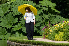 Woman with yellow umbrella (Mukumbura) Tags: uk blue trees england sky woman lake church water pool girl beauty weather yellow gardens architecture umbrella buildings reflections spring quiet peace cathedral unitedkingdom britain religion tranquility wells somerset wellscathedral well clear moat magnificent grandeur bishopspalace peacefulscene