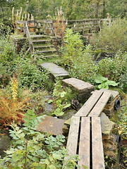 Bamford Crossing (matrobinsonphoto) Tags: bridge autumn plants green mill water river hope stream stones district derwent derbyshire peak stepping valley greenery ferns planks bamford