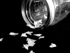 Oops (queenmapei) Tags: blackandwhite bw white black paper dreams jar hopeslost