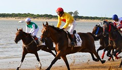(...Away...) Tags: summer sky horses people sun hot beach beautiful river spain sand racing sanlucardebarrameda