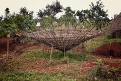 Roof Weaving, Bodi Tribe (Rod Waddington) Tags: africa roof construction handmade traditional tribal hut omovalley ethiopia tribe weaving bodi