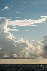 Morning Fish (AgfaBlue) Tags: sunset calgary ferry vancouver plane sunrise airport belize flight hike explore crew catamaran skateboard sail kelowna snowskate