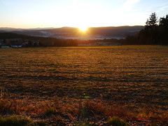 Guten Morgen, liebe Sonne !  /   Good morning, dear sun ! (rudi_valtiner) Tags: light shadow sun field sunrise licht horizon feld sonne sonnenaufgang schatten niedersterreich horizont sonnenstrahlen sunbeams loweraustria schwarzatal vision:sunset=082 vision:outdoor=0896 vision:sky=0965 vision:clouds=0933 vision:ocean=0738 maronirunde
