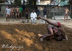 Kushti - 2 (Blinkofanaye) Tags: india wrestling traditional loincloth haryana akhara kushti pehelwan pehlwan fardiabad mallavidya