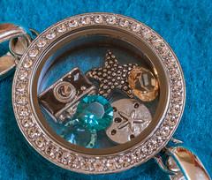 CloseUp (CBRenee) Tags: camera sand dollar bracelet gems seastar lptg14wk9