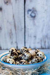 quail eggs (Mezeselet) Tags: blue food easter spring egg eggs striped quail foodstyling healthly