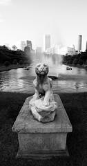 Pantera (LFSilvestre) Tags: brazil sculpture white black animal animals rio braslia stone brasil square de janeiro escultura praa brasilia pantera
