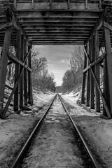 Winter railroad II (Greg Stanhope) Tags: wood old winter blackandwhite bw ontario canada nature train landscape landscapes wooden spring nikon moody snowy traintracks trains rails blacknwhite d5200 nikond5200 125203141999