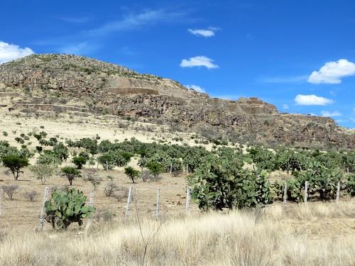 La Quemada en Zacatecas
