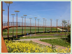 N3MP-WP bridge in Zoetermeer (Isabel Fagg) Tags: bridge zoetermeer pont brug westerpark n3mp techconsult